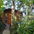 rainforestcabin